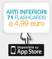 ARTI INFERIORI 71 FLASHCARDS a 4,99 euro - Disponibile su App Store